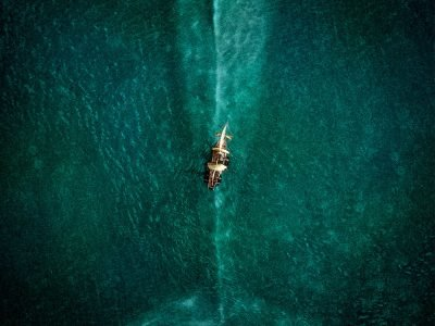 Review Film The Heart of The Sea