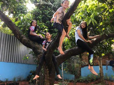 Mengajari Anak Memanjat Pohon