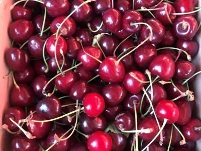 Buah Cherry di Turki
