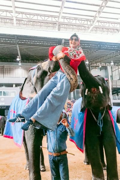 Foto Bareng Gajah di Thailand